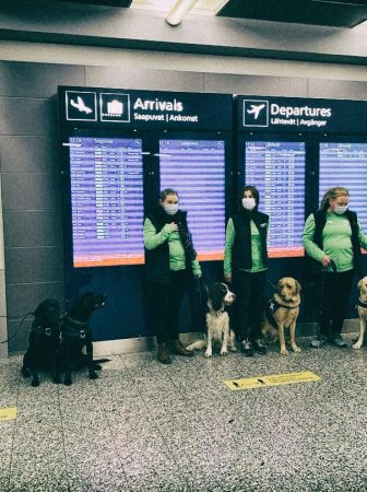 The only Covid-19 test you might actually like: corona-positive passengers at the Helsinki airport are detected by dogs